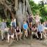 Under a Brazilian tree